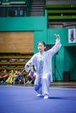 Taichi Wushu Imagem de Stock Royalty Free