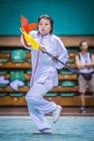 Taichi Wushu 免版税库存照片