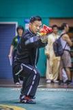 Taichi Wushu 免版税图库摄影