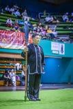 Taichi Wushu 免版税库存图片