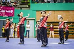 Taichi Wushu Royalty Free Stock Photo