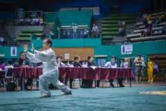 Taichi Wushu Royalty Free Stock Image