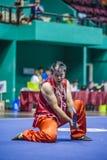 Taichi Wushu Stock Photography