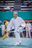 Taichi Wushu Royalty Free Stock Photos