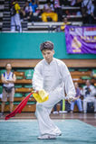 Taichi Wushu Stock Photo