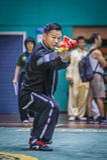 Taichi Wushu Royalty Free Stock Photography