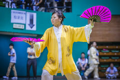 Taichi Wushu Stock Image