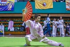 Taichi Wushu Stock Images