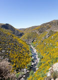 Taieri Gorge railway on side of ravine with bridge Royalty Free Stock Photography