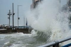 Taifun GONI schlägt Busan und Südkorea zu Stockfotografie