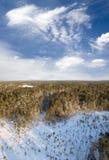 Taiga aéreo Foto de Stock