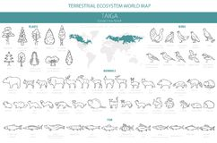 Free Taiga Biome, Boreal Snow Forest Thin Simple Line Design. Terrestrial Ecosystem World Map. Animals, Birds, Fish And Plants Stock Images - 140114244