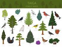 Taiga biome, världskarta för ekosystem för boreal snöskog jordisk Infographic design för djur, för fåglar, för fisk och för växte vektor illustrationer