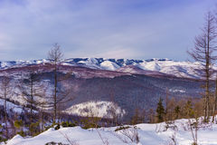 Taiga covered mountains in winter Stock Photography