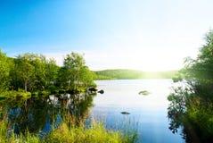 taiga de lac photo libre de droits