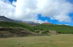 Taiga del siberiano della montagna fotografie stock libere da diritti