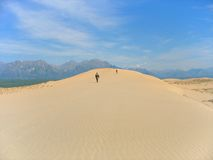 Taiga desert landscape 01 Stock Image