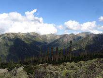 Taiga et montagnes de Sayan Image stock