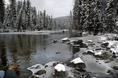 Taiga flod Royaltyfria Bilder