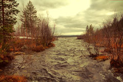 Taiga flowing spring river Stock Photography