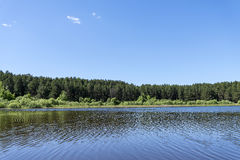 Taiga forest on the edge of the lake Stock Photo