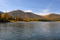 Taiga river in Eastern Siberia Royalty Free Stock Image