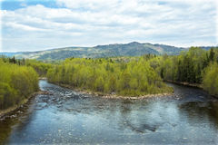 On the taiga river. Island in the middle of the taiga river isolated mountains in the background and the light sky Royalty Free Stock Image