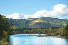 On the taiga river Stock Images