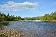 Taiga river in the Northern Urals. Stock Photography