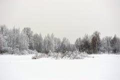 Taiga sjö Fotografering för Bildbyråer
