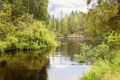 Taiga small river. Karelia Stock Photo