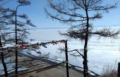Taiga in the spring. Siberian forest. Taiga. Lake Baikal. Birch forest. Bonfire in the forest. Siberian forest. Baikal. Birch forest. Siberian forest. Taiga in stock photo