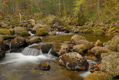 Taiga stream-2 Stockfoto