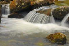 Taiga stream-2 Stockfotografie