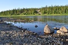 Taigarivier Paga, de Maagdelijke bossen van de Komi-Republiek royalty-vrije stock foto