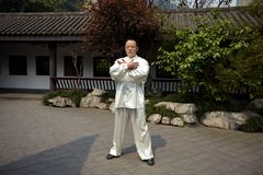 Taiji master Royalty Free Stock Photo