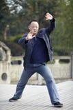 Taiji master Royalty Free Stock Images