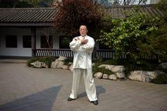 Taiji-Meister Lizenzfreies Stockfoto