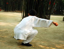 Taiji Quan Royalty Free Stock Photography