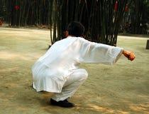 Taiji Quan. Chinese Wushu-Taiji Quan in Chengdu,west of China Royalty Free Stock Photography