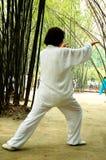 Taiji Quan Fotografia Stock