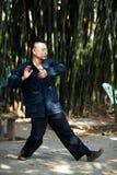 Taiji Quan Stock Images