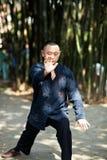 Taiji Quan Stock Photography