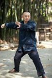 Taiji Quan Royalty Free Stock Photo