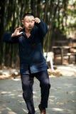 Taiji Quan Royalty Free Stock Photography