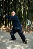 Taiji Quan Royalty Free Stock Image