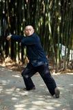 Taiji Quan. Chinese Wushu-Taiji Quan in ChongQing ,WestSouth of China Royalty Free Stock Image