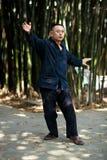 Taiji Quan Stock Image