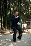 Taiji Quan Royalty Free Stock Images