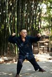 Taiji Quan Stock Photos